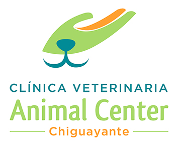 animalcenter.cl